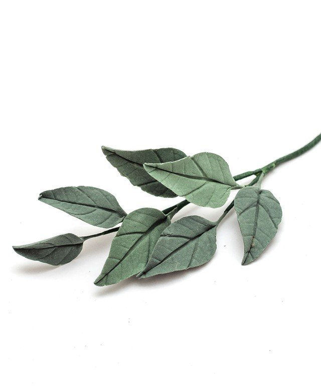 Платья Rara Avis Foliage